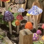 Garden Mushrooms Clay Event
